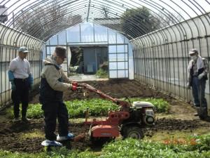 3坪ほどの空きスペースに耕運機をかけて土を耕す